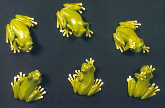 Wall Frogs
