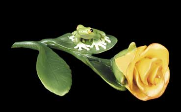 Rose with Frog