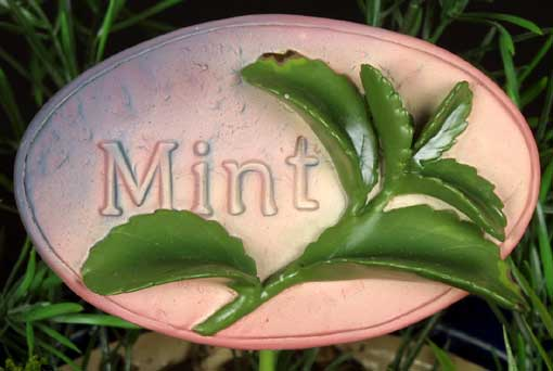Herb Stake - Mint