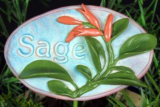 Herb Stake - Sage