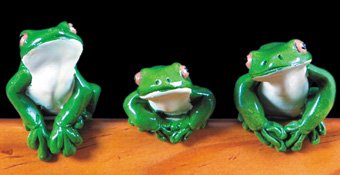 White Lipped Frog - Ledge. Set of 3