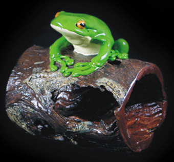 One Frog on a Log